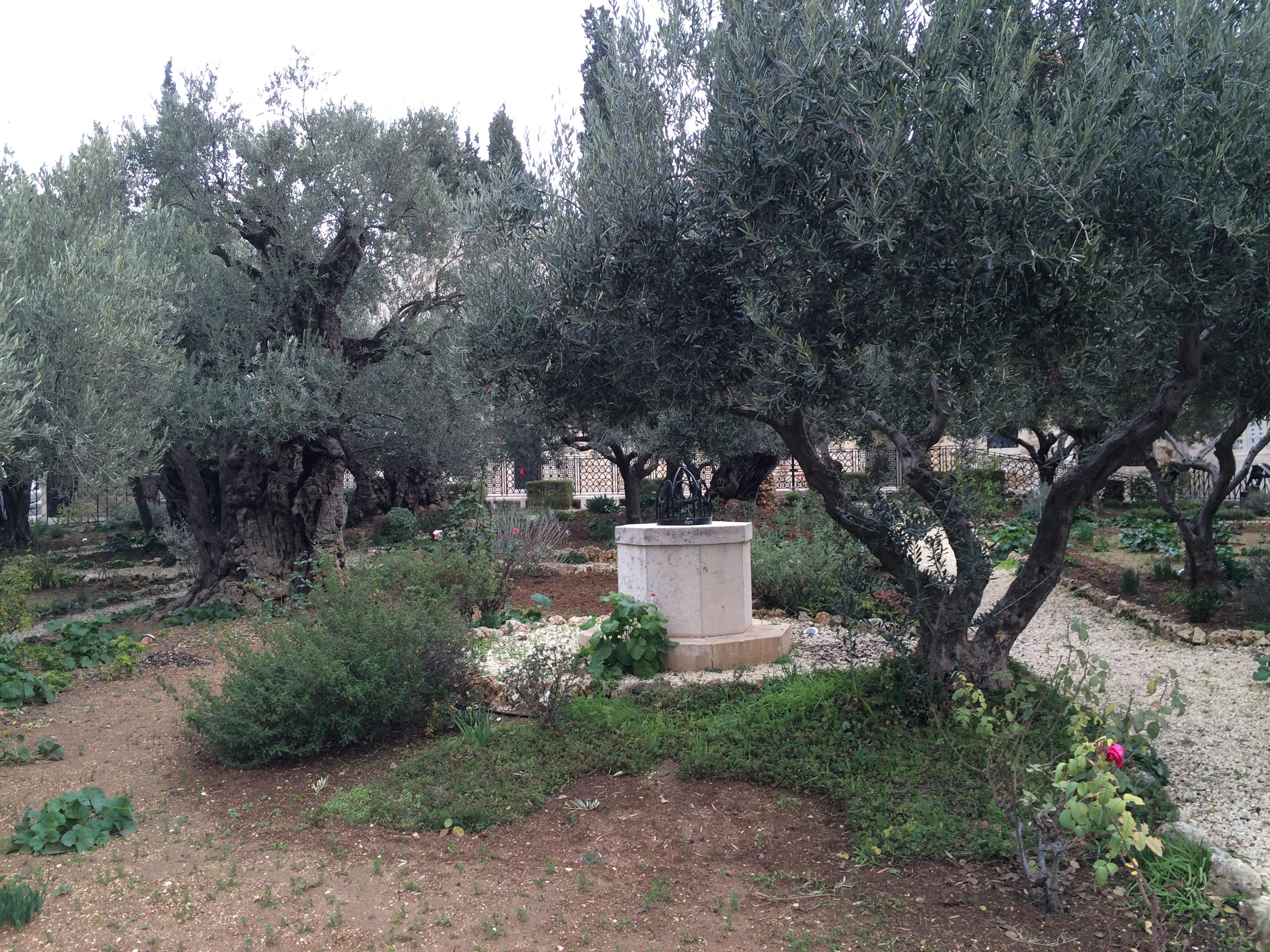 What happened garden of gethsemane garden ftempo for Garden state parkway toll calculator
